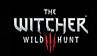 《巫师3:狂猎》游戏评测:杰洛特的诗篇的终结