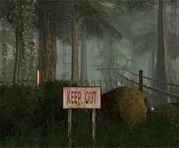 《孤岛惊魂》游戏壁纸