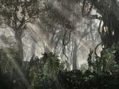 《使命召唤10:幽灵》PC版高画面演示