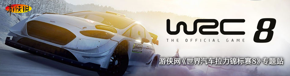 世界汽车拉力锦标赛8