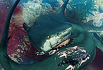深海巨兽恐怖来袭