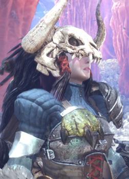 《怪物猎人世界》全剧情任务BOSS视频流程
