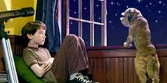忍不住快要笑抽了!十部精彩喜剧外星人题材电影