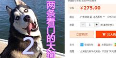 《看门狗2》疑似淘宝下架?中华田园犬2是什么鬼?