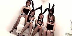 五个黑丝兔女郎你选哪个?动图双马尾萌妹也有风骚时