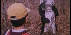 11部八九十年代国产科幻片 男人的世界疯狂要女人!