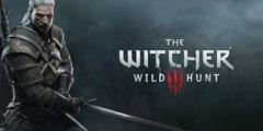 《巫师3:狂猎》玩家制硬核生存mod 白狼被削成废狼