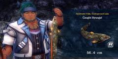 《伊苏8》北美发售公布新预告 DLC详情一览泳装钓鱼