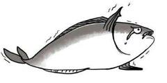 游侠网字幕组:听说没玩过这10款游戏就是咸鱼哦~