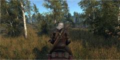 《巫师3:狂猎》新MOD修复草坪 新草地像吃鸡战场!