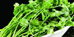 吃货网友评选最难吃蔬菜Top10 第一名竟然不是香菜?