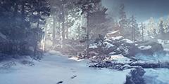 《战神4》最新截图 展示超逼真森林雪景与奎爷父子!