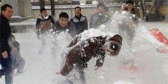 北方人用生命在打雪仗 每日轻松一刻12月17日周日版