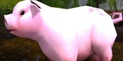 《魔兽》8.0海量生物高清重制赏 可爱的猪猪愈发粉嫩