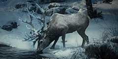 《战神4》新截图场景壮丽细节入微 画面不输地平线