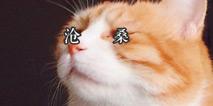 黄牛表示这黑锅咱不背 每日轻松一刻4月30日晚间版