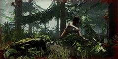 《迷失森林》Steam好评率高达93%!国区售价70元