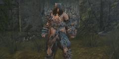 大神挖掘《黑魂重制版》中未采用装备 还有四王剑!