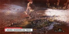 GC2018:《只狼》实机演示公布 Boss战斗画面很风骚