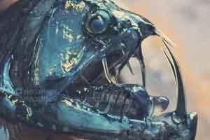 深海中那些稀奇古怪的动物 密密麻麻的眼睛令人窒息