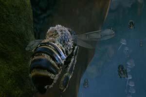 GC19:《蜜蜂模拟》发布分屏实机演示预告 11月发售