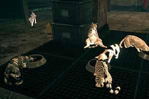 《异界锁链》最大的乐趣其实是吸猫?大发极速赛车群 截图发布!