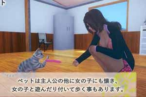 《AI少女》容量确认 搭载宠物系统 有妹有猫人生赢家