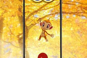 《口袋妖怪:GO》宣布11月社群日主角确认为小火猴