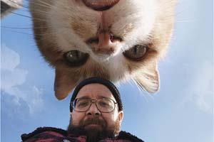 让人向往的世界观!俄罗斯艺术家的巨大化猫咪P图