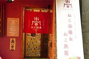 """不来""""猫浴场""""泡个澡吗?日本澡堂风的流浪猫咖啡厅"""