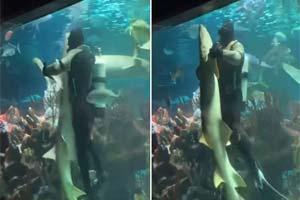 逛街都能吃狗粮?俄罗斯潜水员与鲨鱼水箱热舞放闪