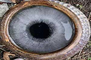 生化危机G病毒眼睛惊现人间?24张毫无PS的错觉照片