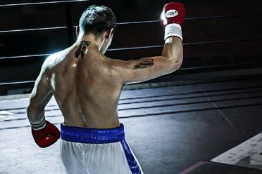 拳击游戏《电子竞技拳击俱乐部》游侠专题站上线