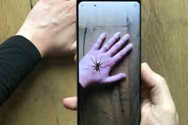 蜘蛛惊骇症优游平台救了?瑞士大学全新AR利用结果明显
