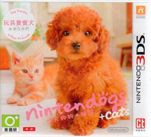 任天猫狗 玩具贵宾犬与新伙伴