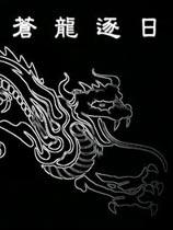 《金庸群侠传之苍龙逐日》  硬盘版