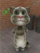 《会说话的汤姆猫》完整硬盘版