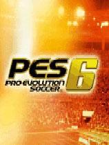 《职业进化足球6》   硬盘版