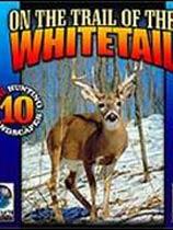 追猎白尾鹿