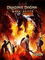 《龙之信条:黑暗崛起》日版
