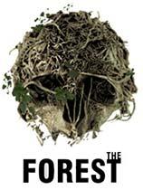 森林的配置要求是什么