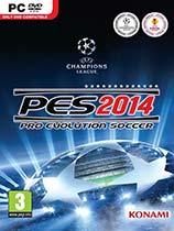 《实况足球2014:决战世界杯》免安装绿色版