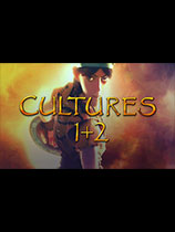 《文化:完全版》