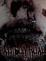 艾莉森之路