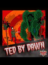 黎明的泰德