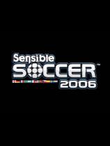《感官足球2006》   绿色硬盘版