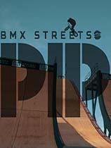 《PIPE街头自行车特技》免安装绿色版