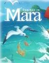 《瑪拉的夏天》免安裝綠色中文版[官方中文]