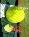 《全王牌网球模拟器》免安装绿色中文版[v1.14.24|官方中文]