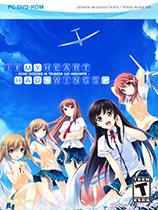 《心之翼》免DVD光盘版